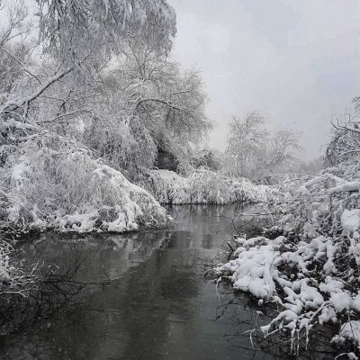 Iarna-in-delta-dunarii