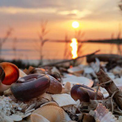 Sunset---Danube-Delta