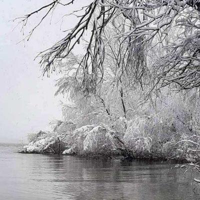 iarna-in-delta