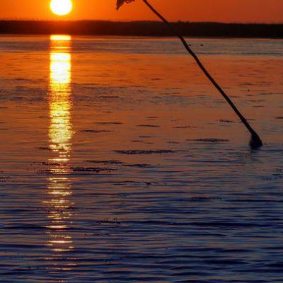 rasarit-de-soare-in-delta-dunarii